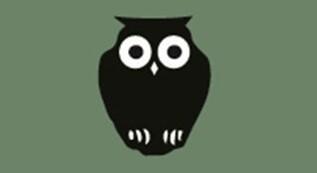 93217656 Owl new style